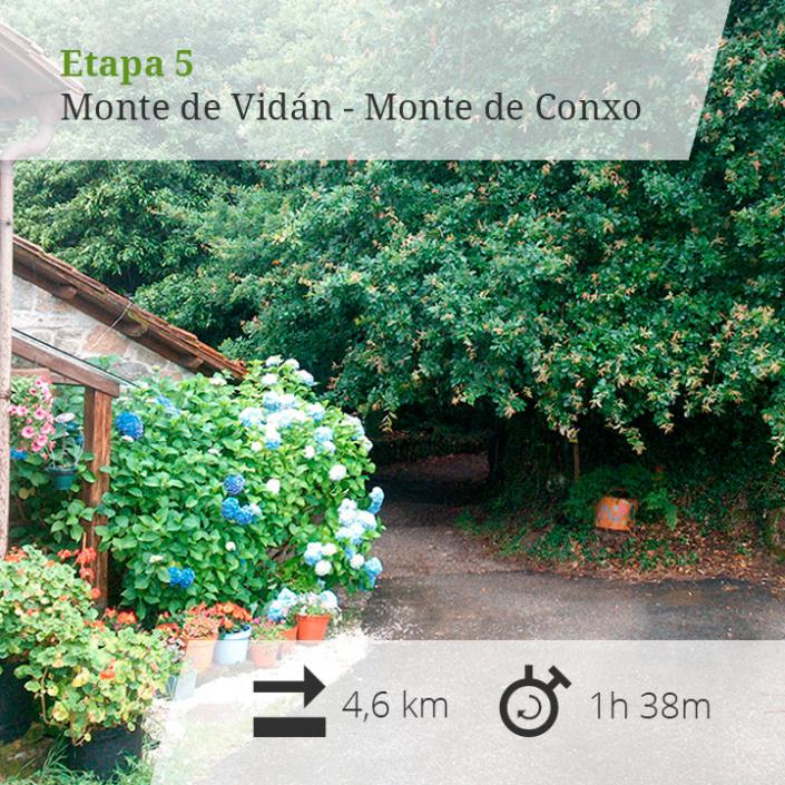 Etapa 5 Monte Vidán - Monte de Conxo