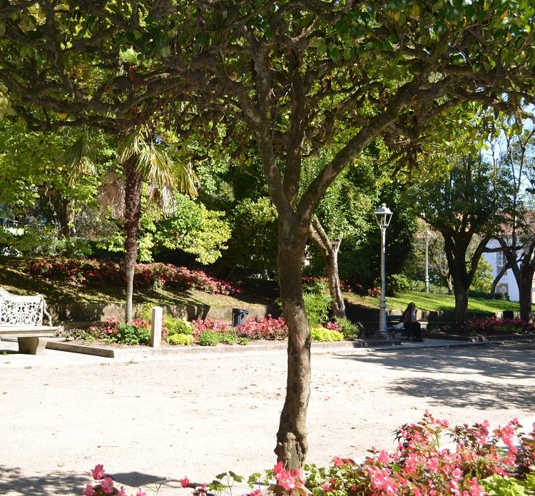 Jardín de Camellias Japonica en la Alameda