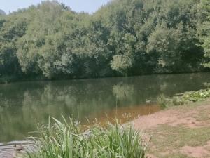 Lago en el Parque do Lago