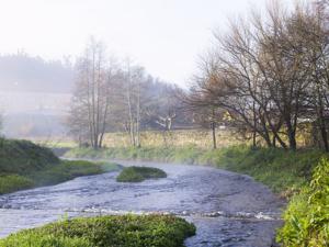 Río Sar