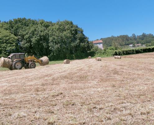 Tractor recollendo a palla