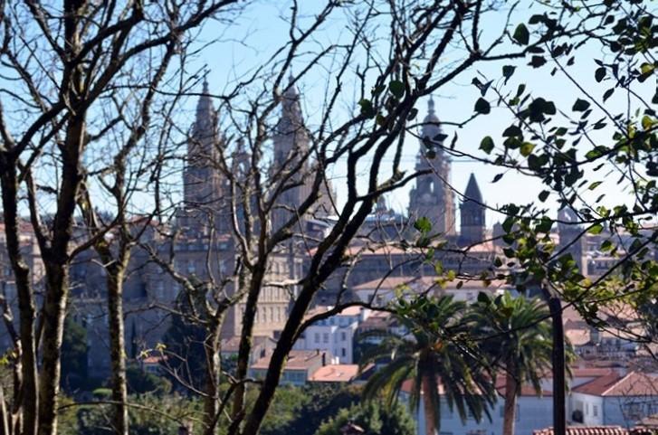 Vista de la Catedral desde el Paseo de los Leones